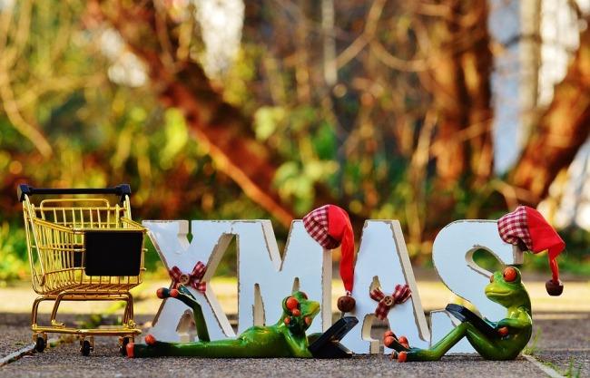 Shopping Christmas Shopping Cart Online Shopping